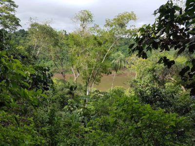 Iguazu 27