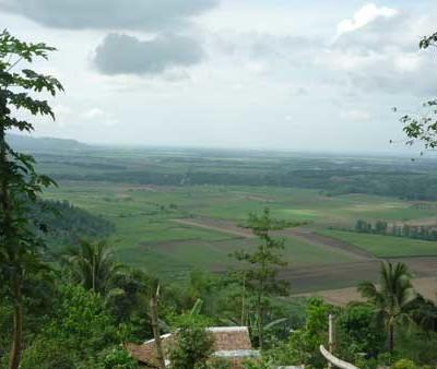 Filippine16